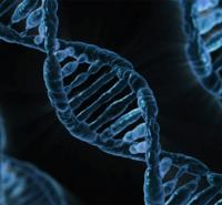 A picture of DNA.
